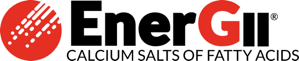 EnerGII Logo