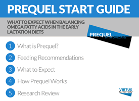 Prequel Start Guide PDF