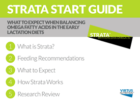 Strata Start Guide Screen