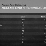 Amino Acid Balancing – Dr. Mike Hutjens
